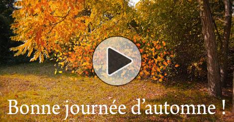 Paysages d 39 automne color es images et cartes virtuelles - Images d automne gratuites ...