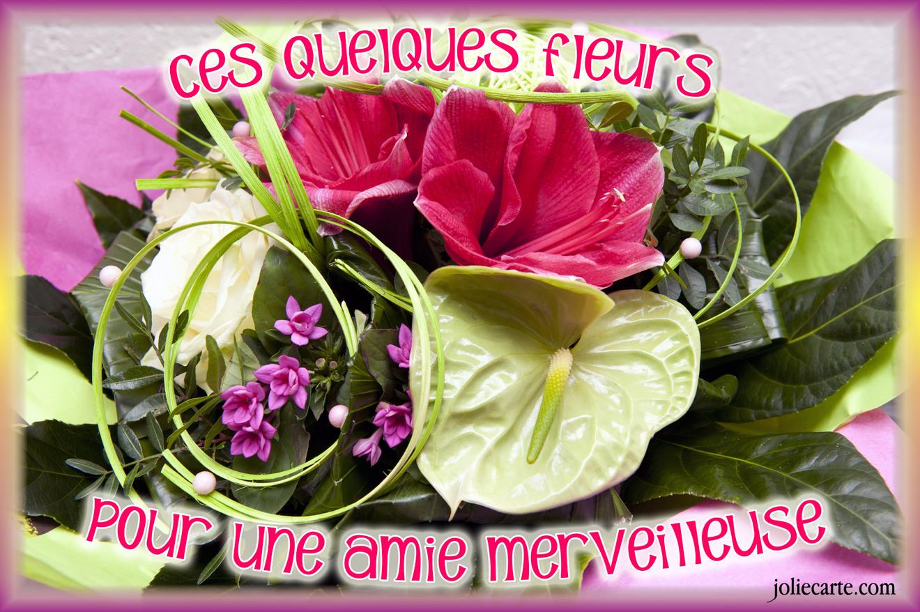 Ces quelques fleurs pour une amie merveilleuse