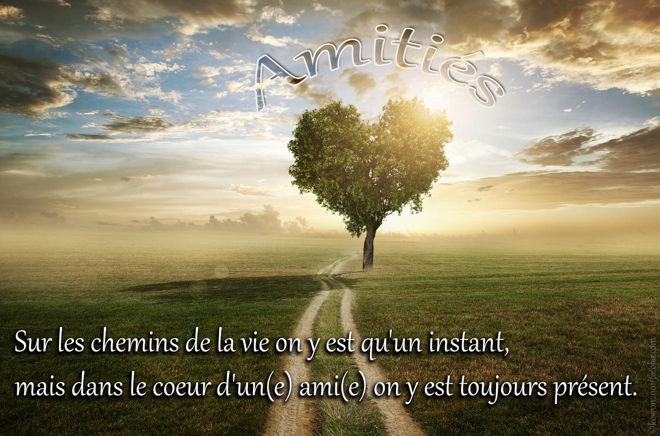 Sur les chemins de la vie on y est qu'un instant, mais dans le coeur d'un(e) ami(e) on y est toujours présent. Amitiés.