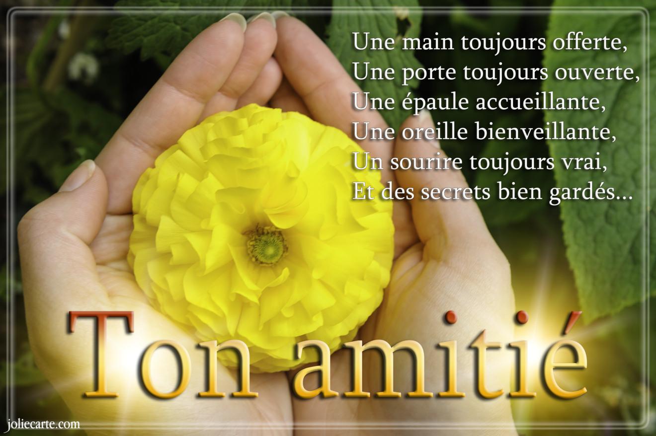 Ton amitie