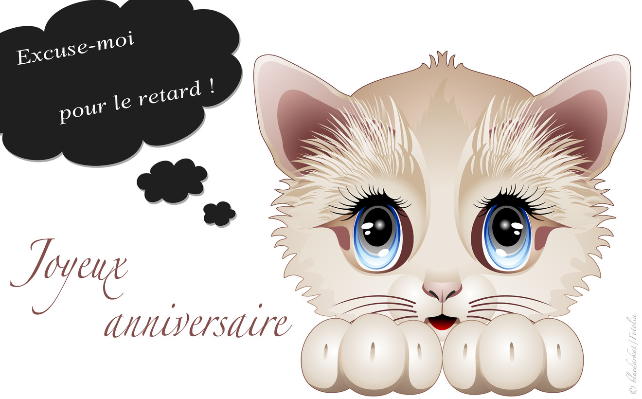Excuse moi anniversaire