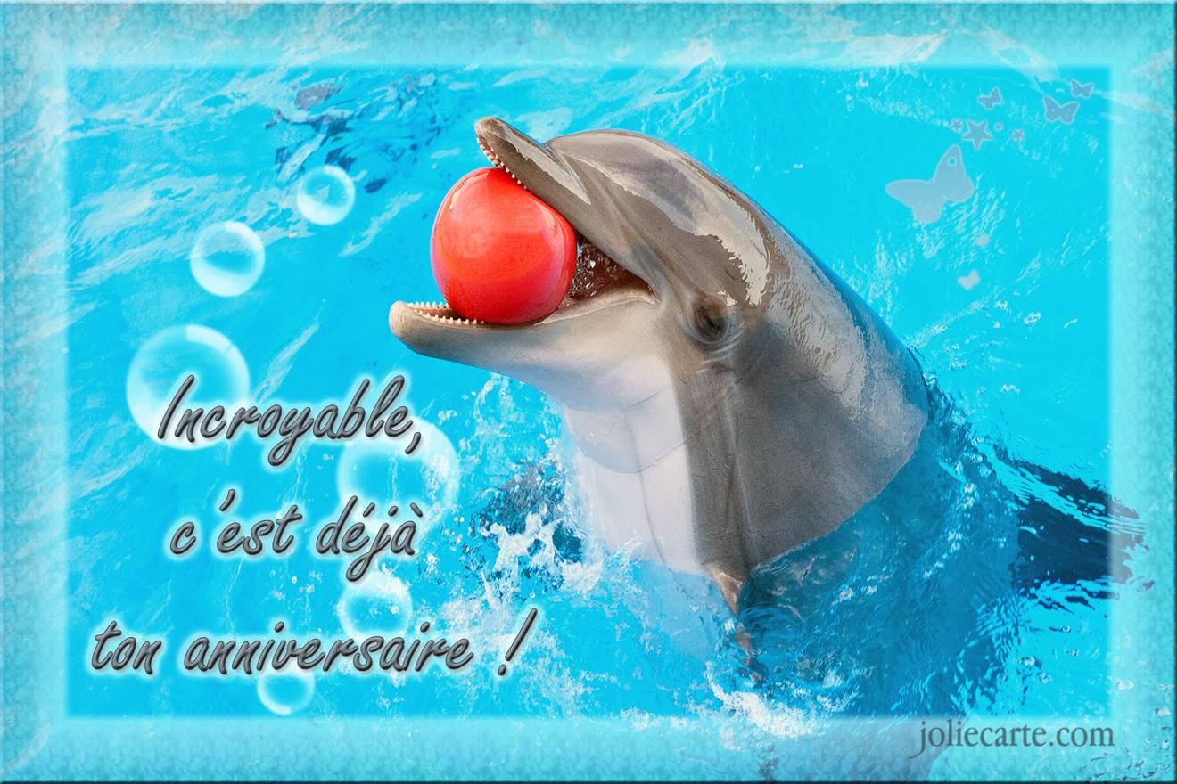 Cartes virtuelles anniversaire dauphin joliecarte - Images dauphins a imprimer ...