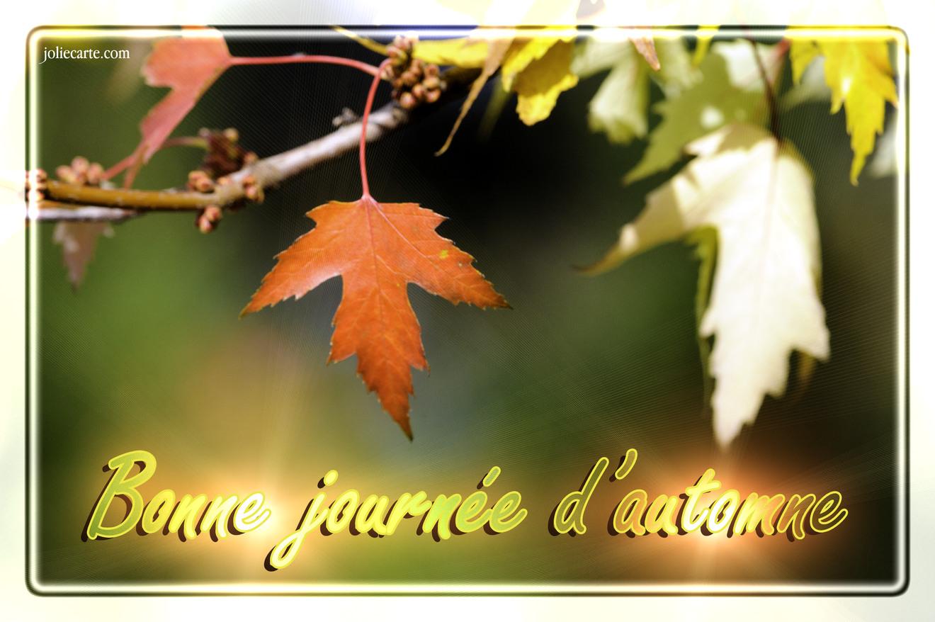 Bonne journée d'automne