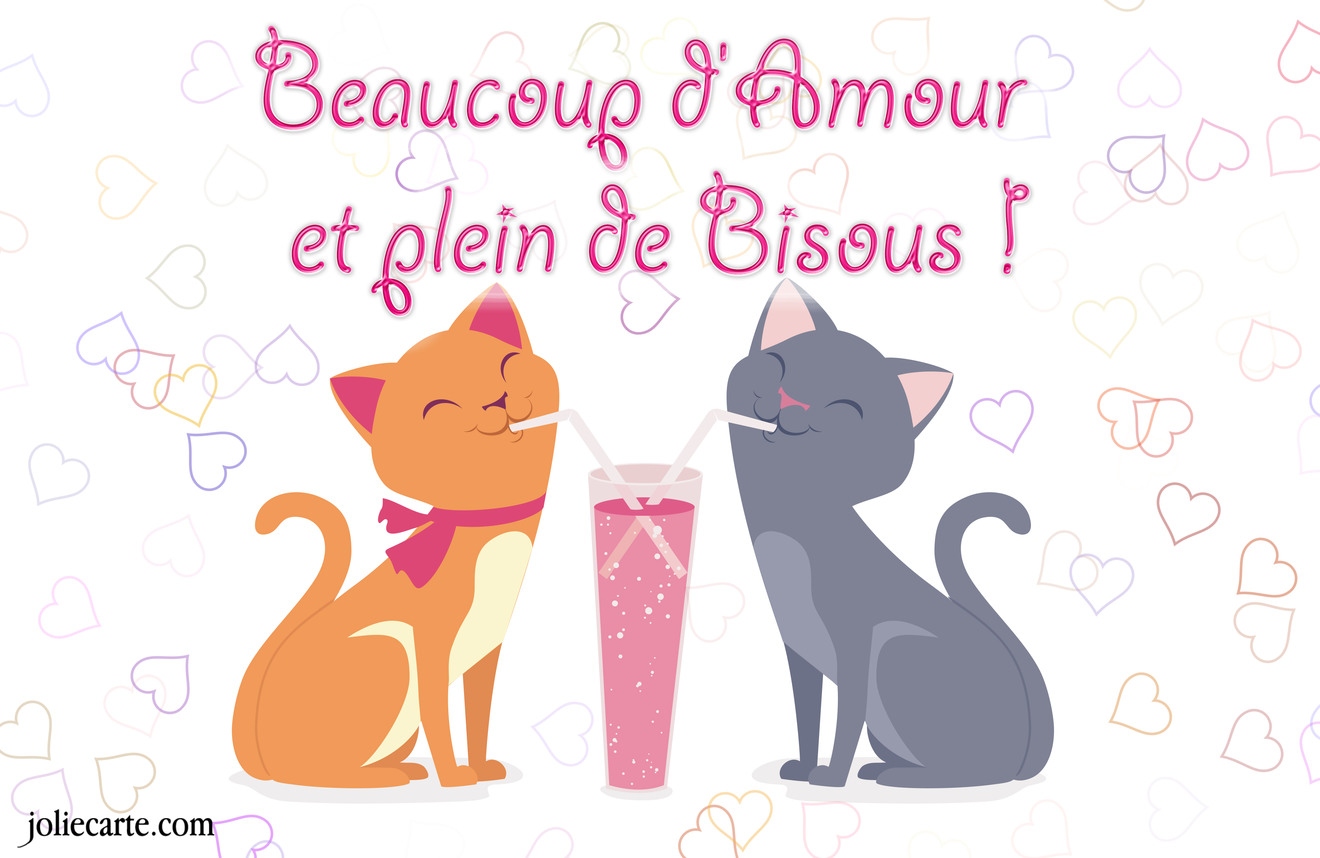 Amour bisous chat