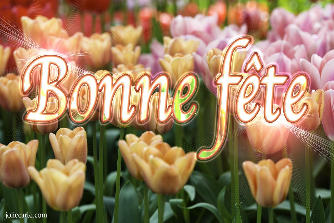 cartes virtuelles bonne fete tulipe joliecarte. Black Bedroom Furniture Sets. Home Design Ideas