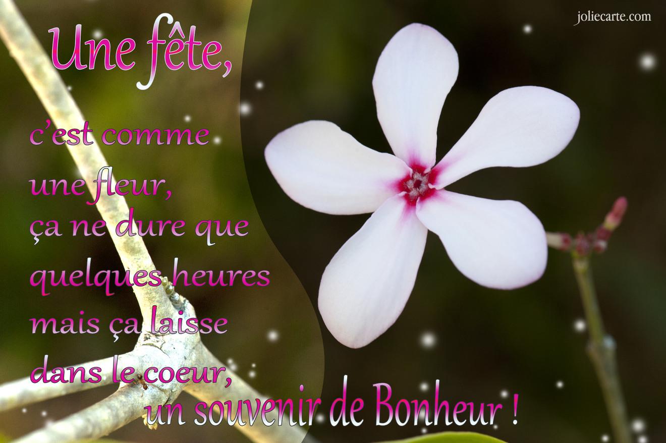 Cartes virtuelles fete fleur joliecarte - Image de carte de fete ...