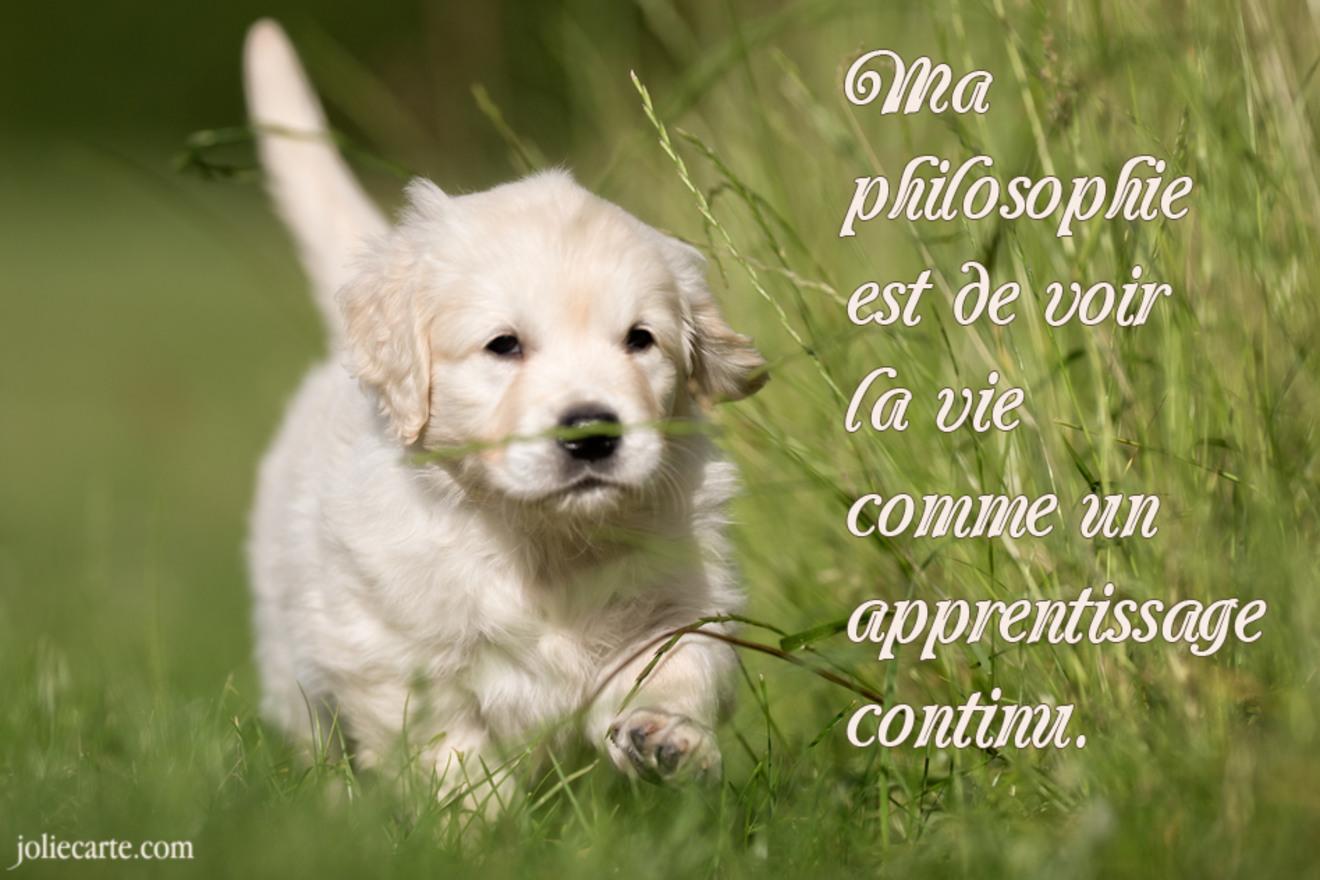 Philosophie de vie