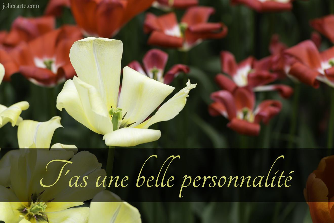 Compliments belle personnalite