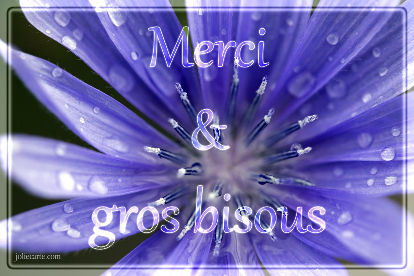 Beliebt Cartes virtuelles bisous merci - Joliecarte PQ61