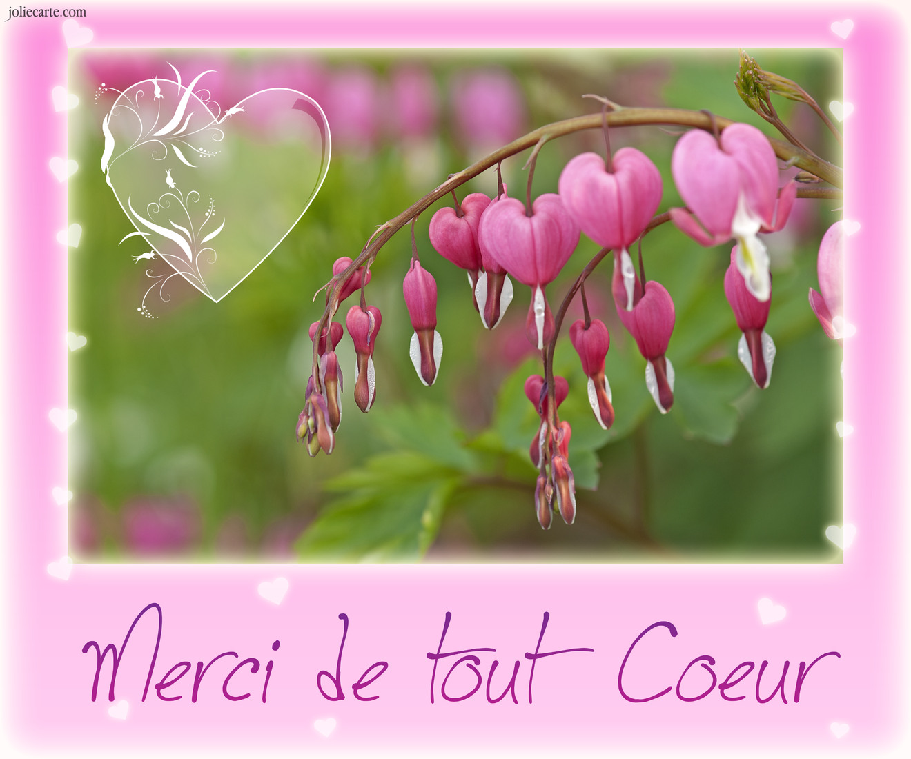 Cartes virtuelles merci coeur joliecarte - Image de coeur gratuit ...