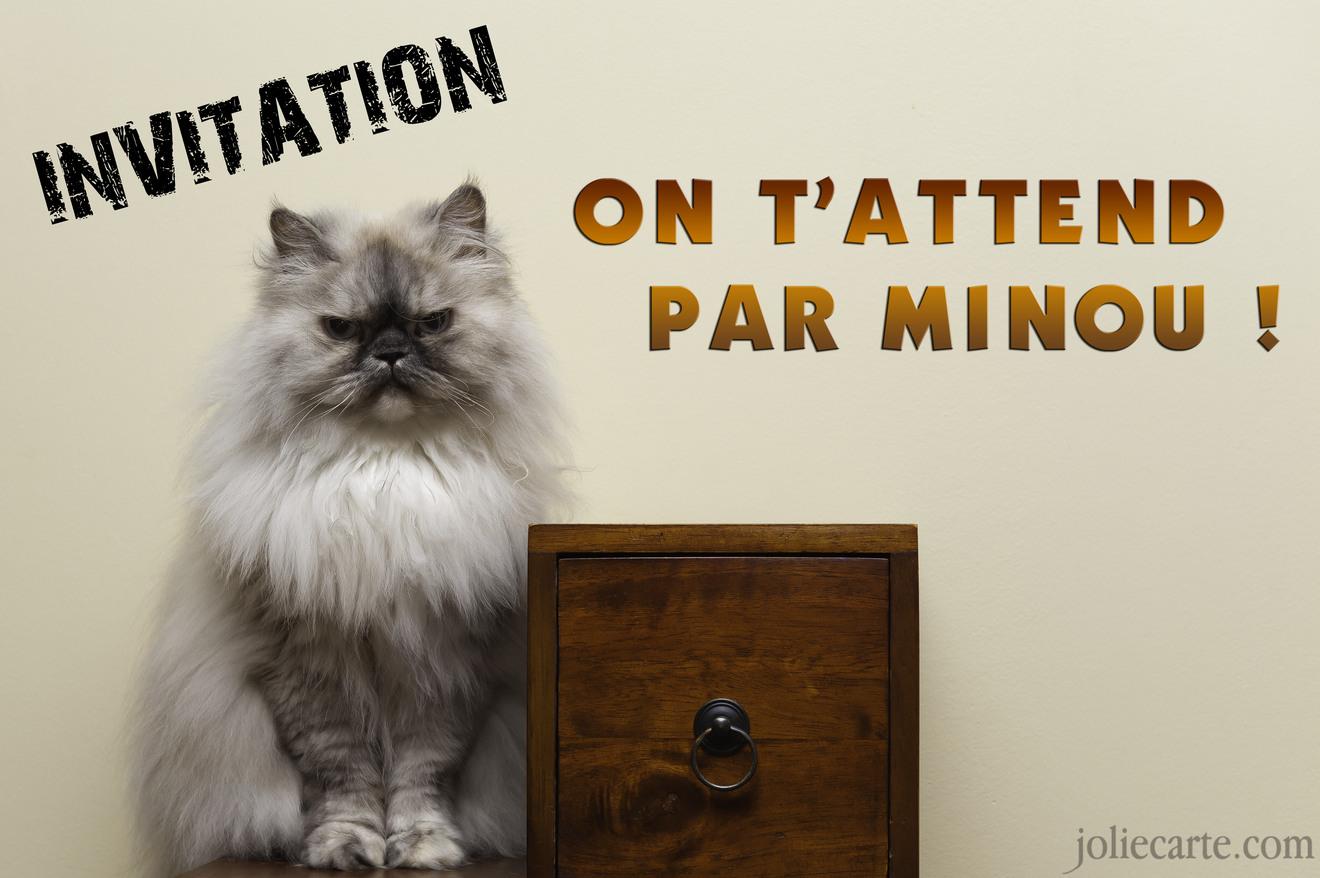 Invitation minou