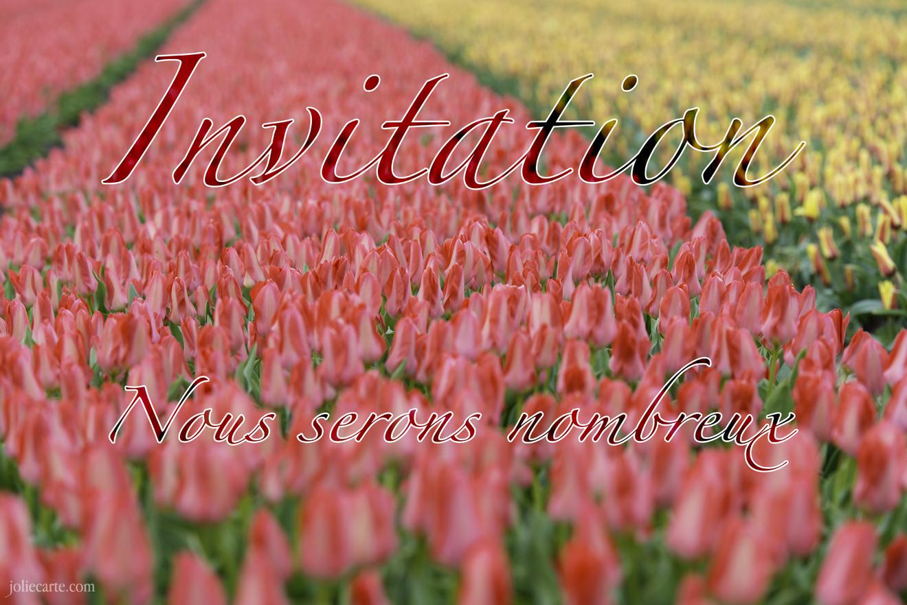 Invitation nombreux