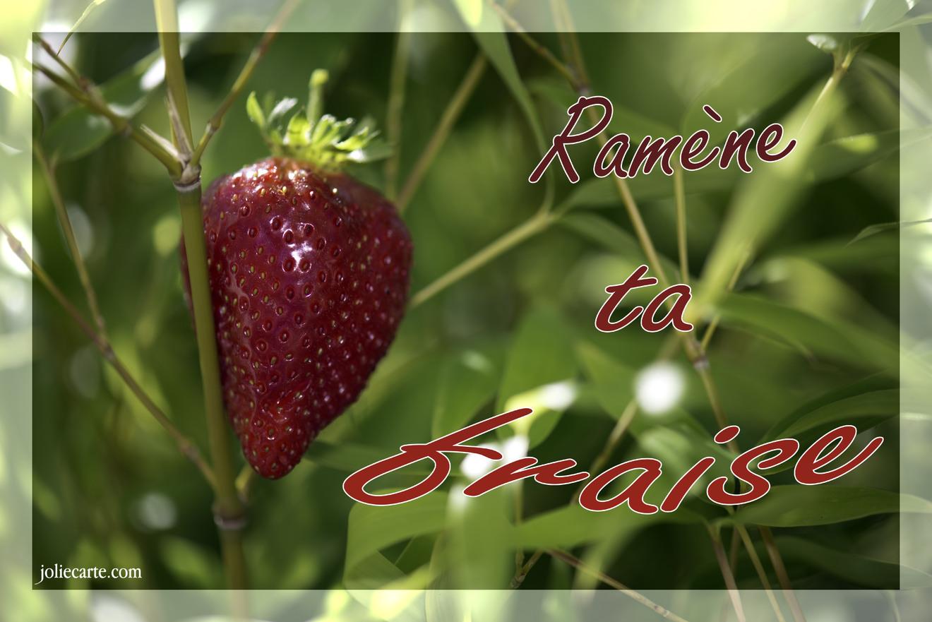 Cartes virtuelles ramene ta fraise joliecarte - Ramene ta fraise ...