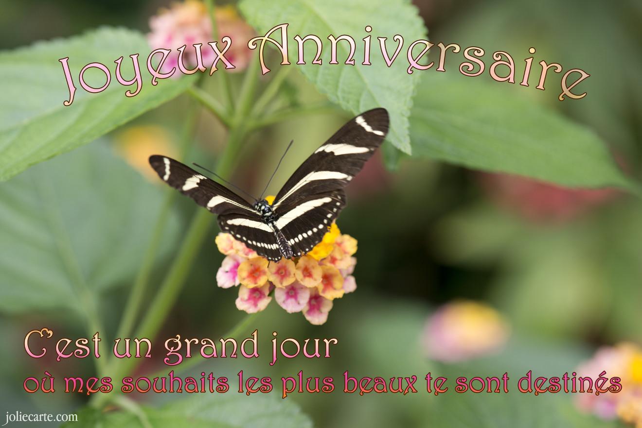 jolie carte anniversaire animée Cartes virtuelles anniversaire souhaits papillon   Joliecarte