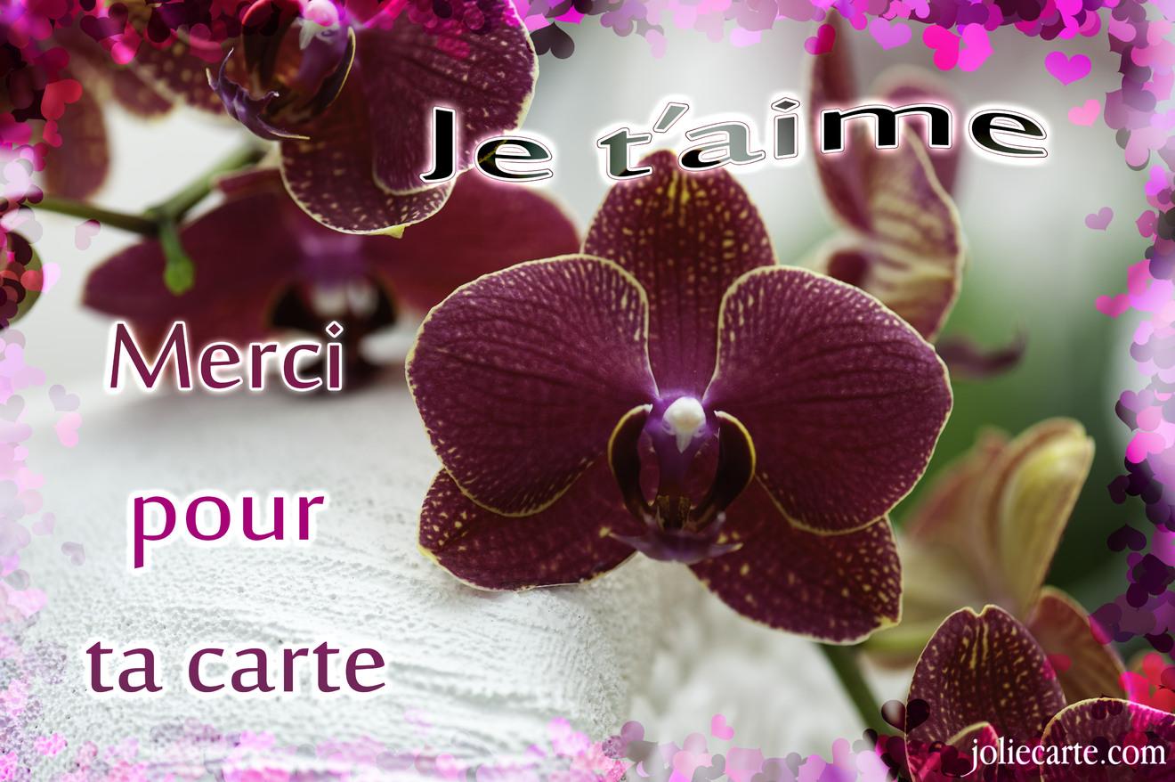 Fabulous Dites lui merci avec une jolie carte d'amour ! KM78