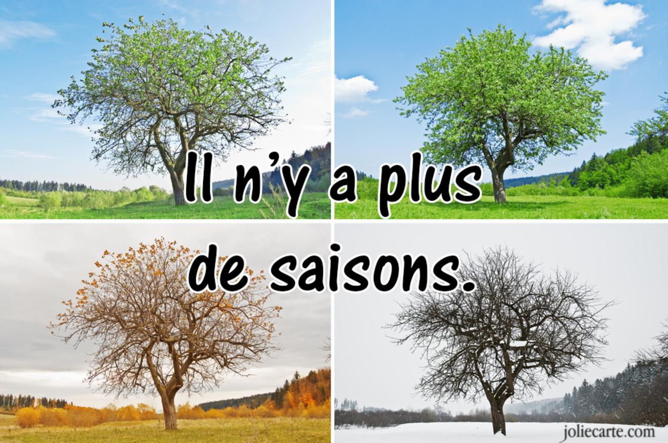 Plus de saisons