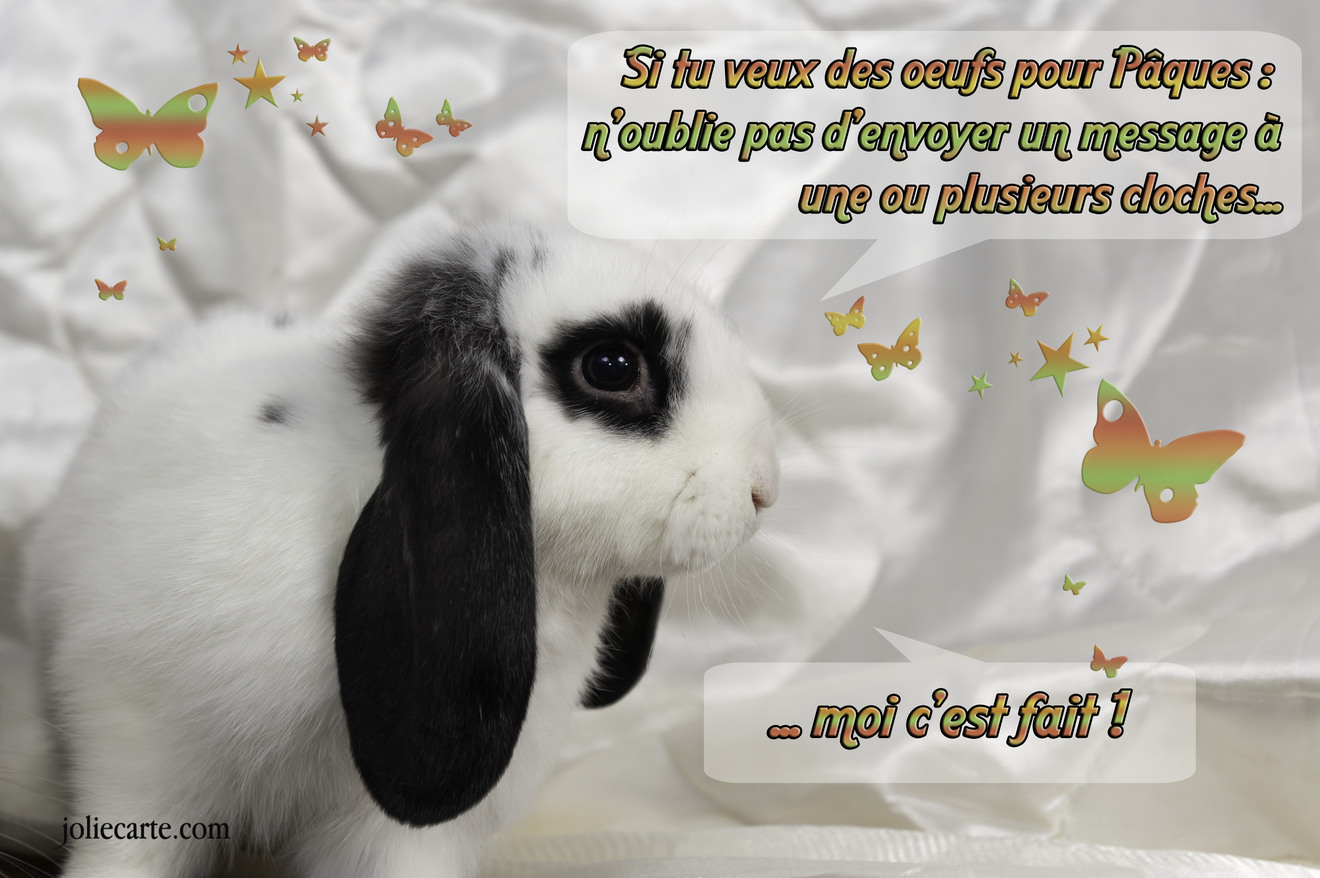 Lapin cloches