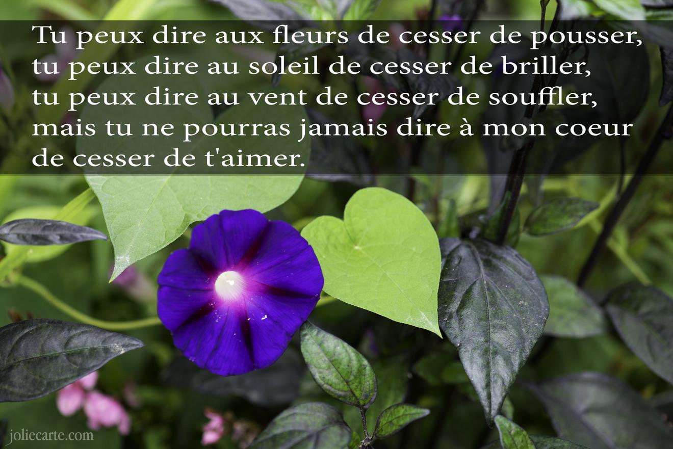 Poeme amour