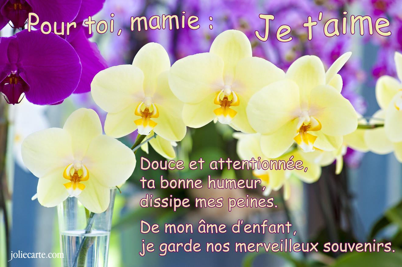 Cartes Virtuelles Mamie Joliecarte
