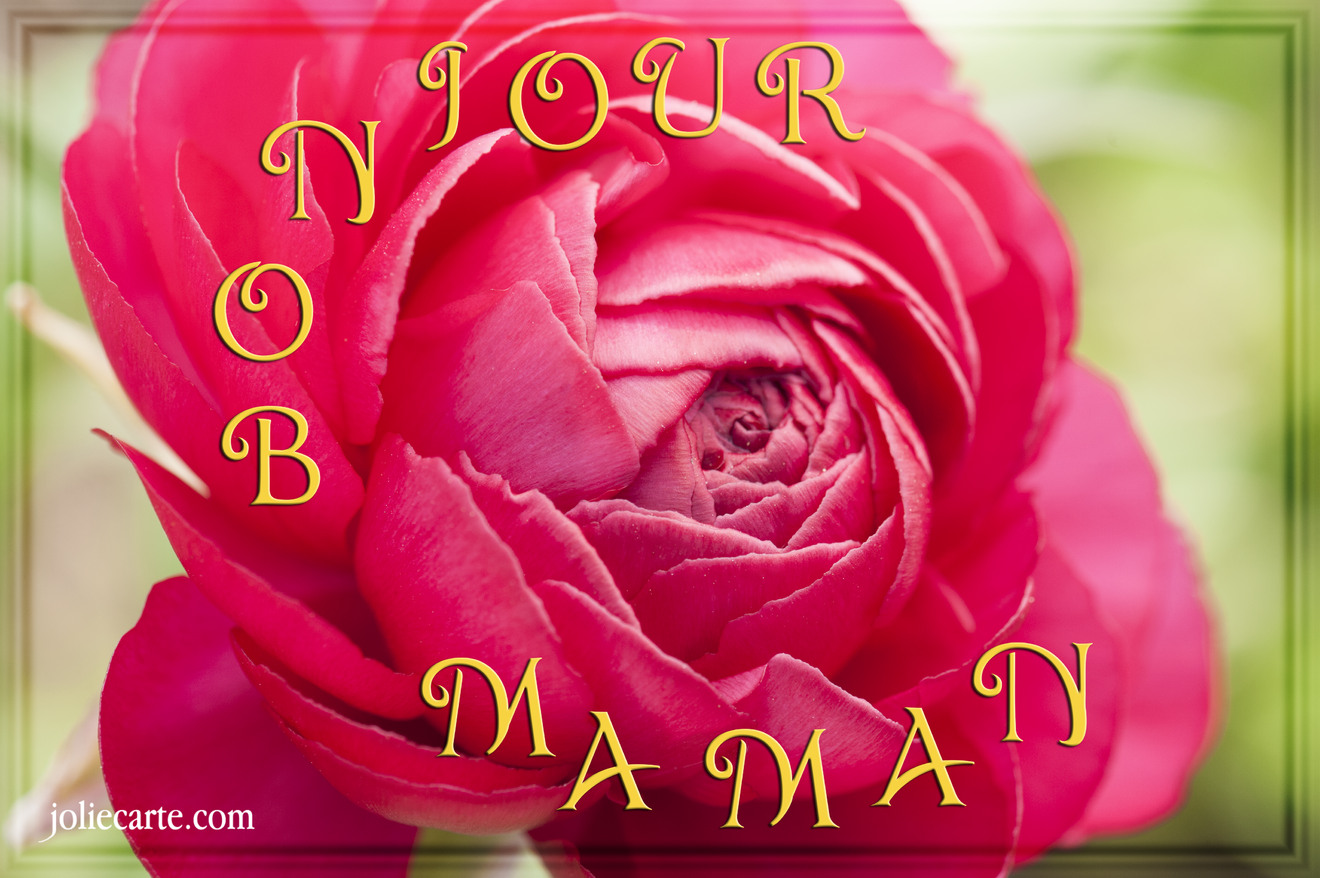 http://fichiers.joliecarte.com/images/cartes/fr/cartes-virtuelles/pour_sa_maman/bonjour-maman.jpg
