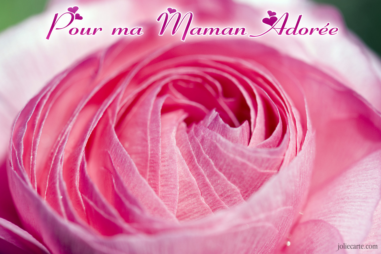 Cartes virtuelles maman adoree rose joliecarte - Image anniversaire maman ...