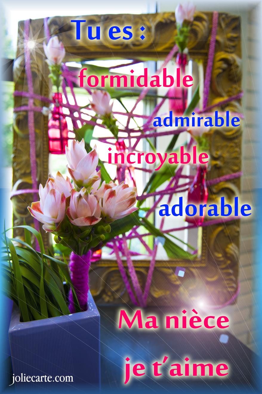 Carte Bonne Fete Chere Niece.Cartes Virtuelles Niece Carte Joliecarte