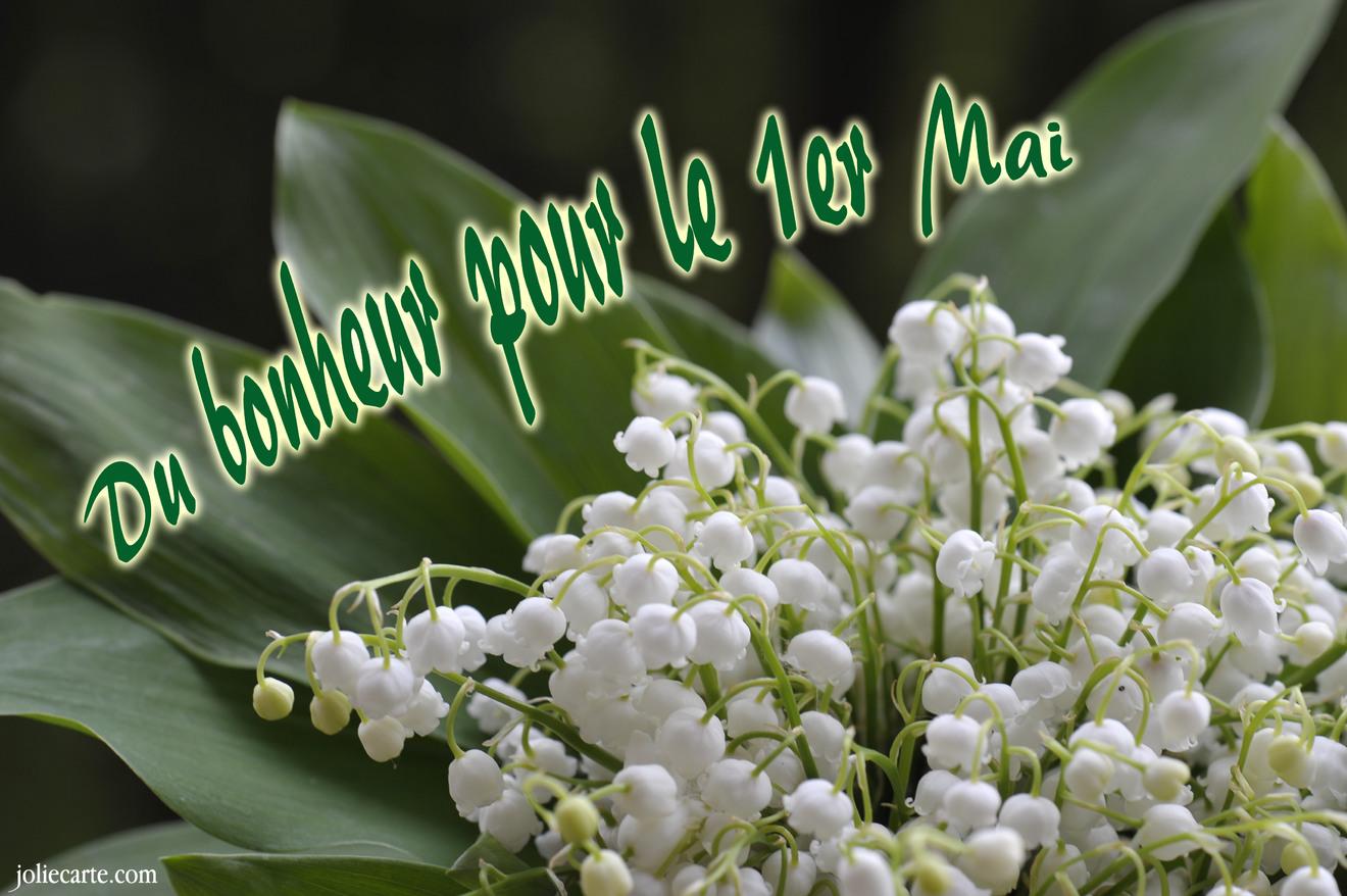 jolie carte du 1er mai Cartes virtuelles bonheur premier mai   Joliecarte