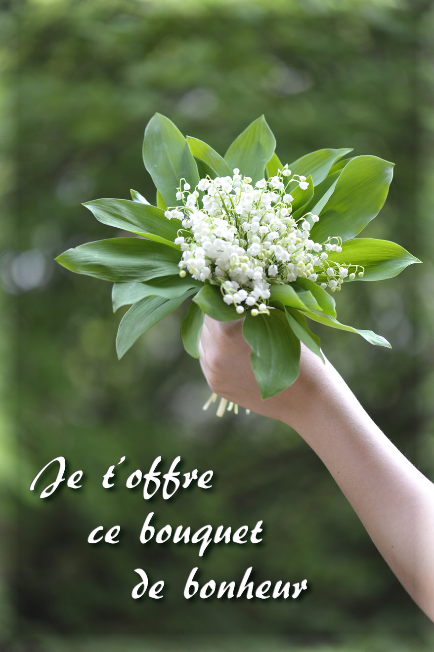 Cartes virtuelles bouquet de bonheur joliecarte for Envoyer bouquet
