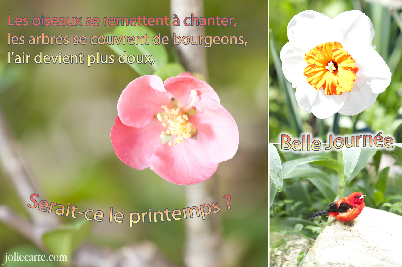 Printemps belle journee