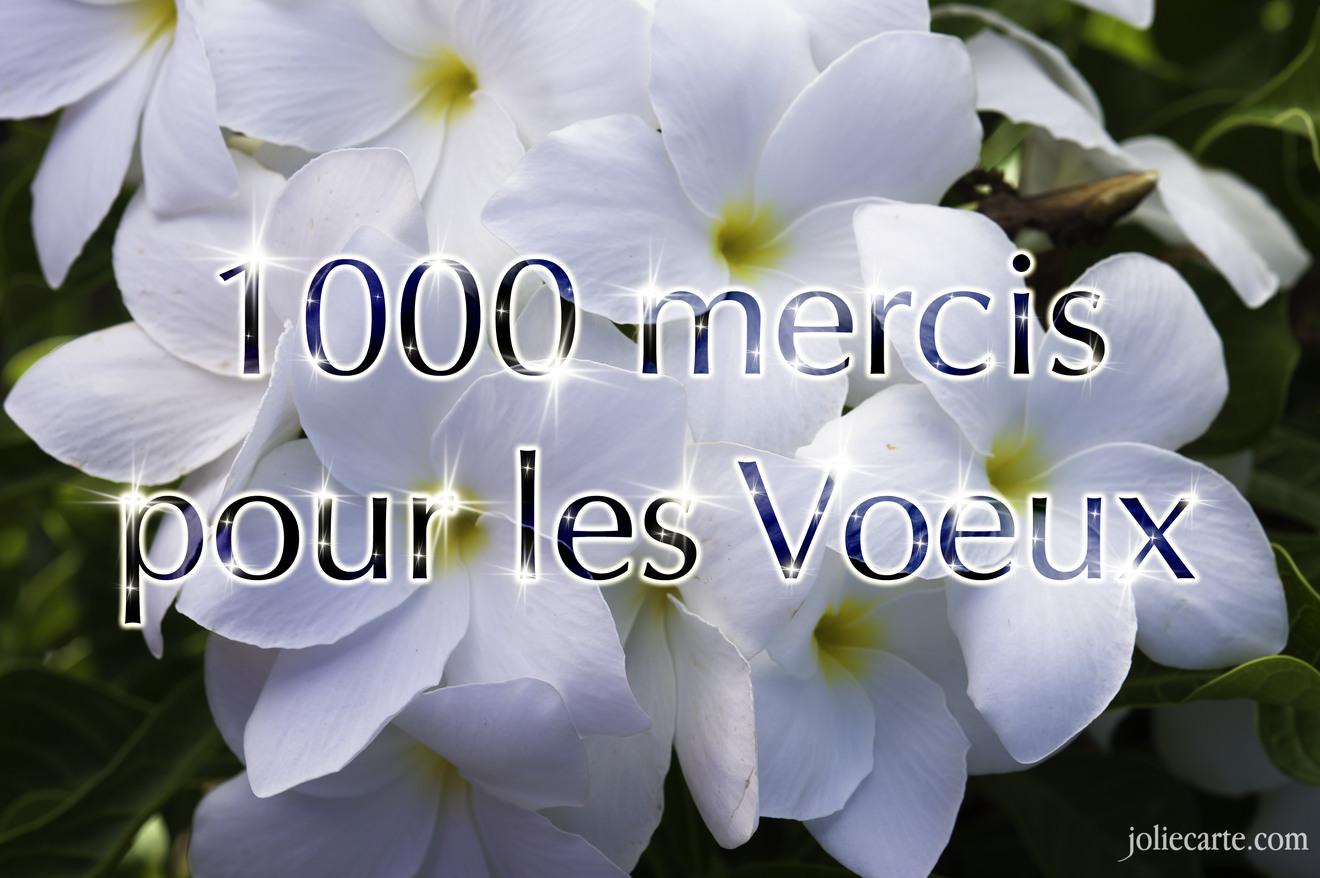 1000 mercis