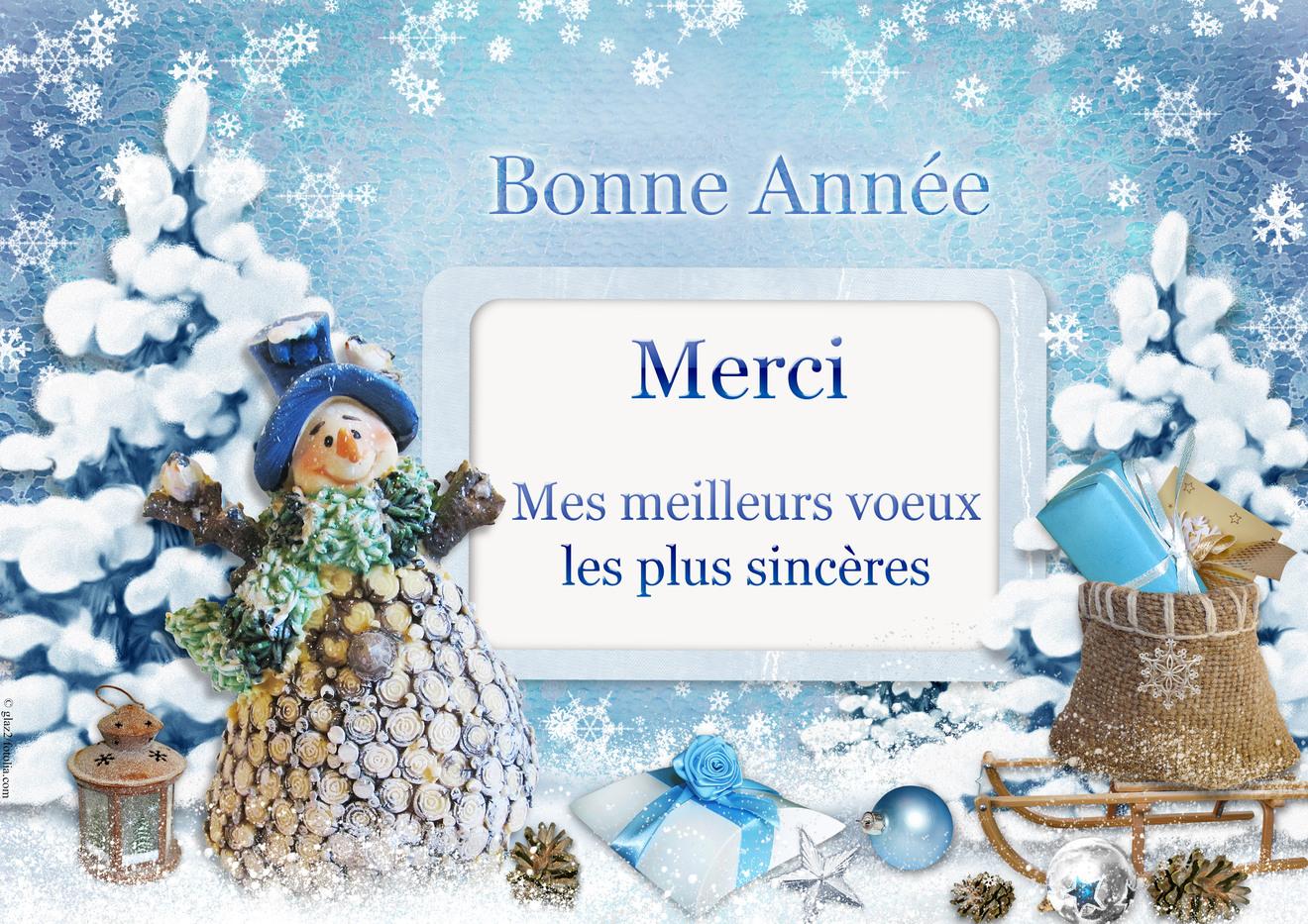 Souvent Cartes virtuelles merci voeux neige - Joliecarte PL36