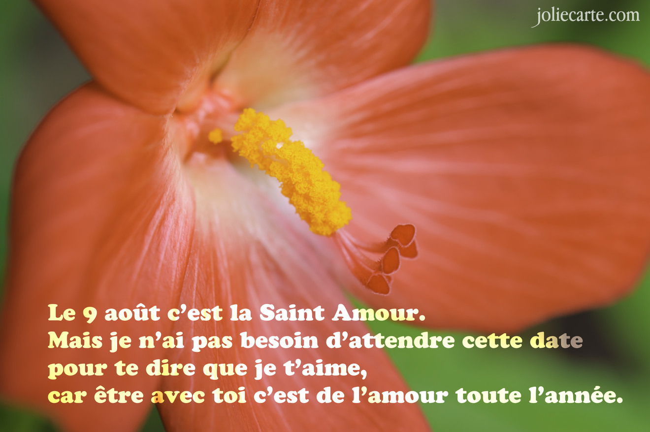 Le 9 Aot Cest La Saint Amour Mais Je Nai Pas Besoin Dattendre Cette Date Pour Te Dire Que Taime Car Tre Avec Toi De Lamour Toute Lanne