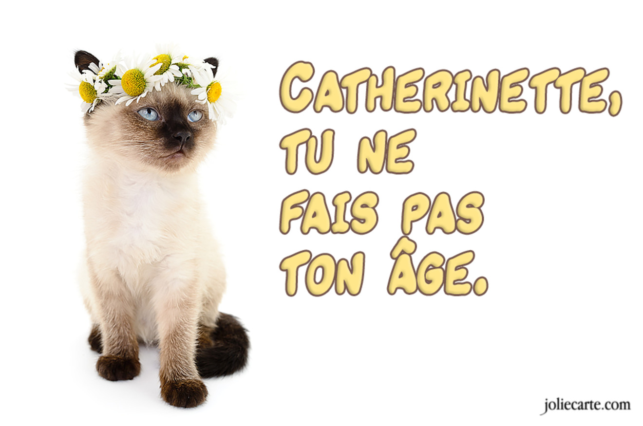 Catherinette chat