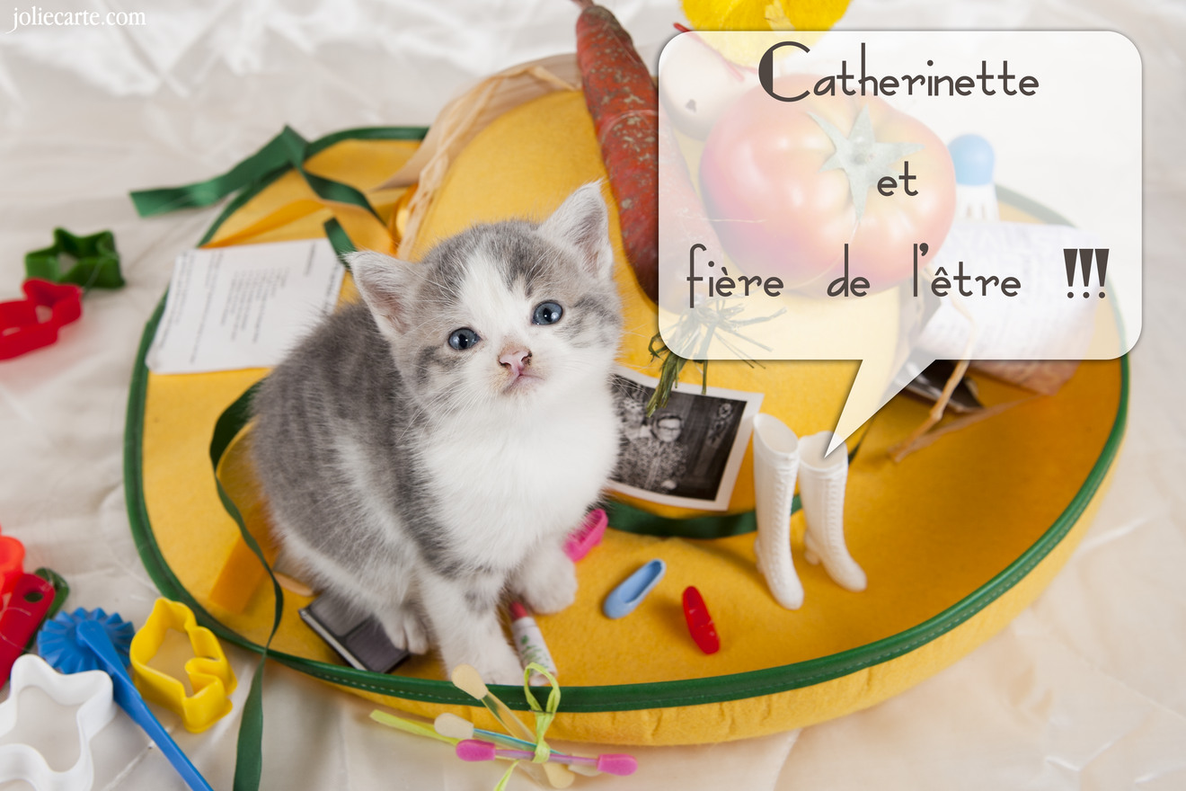 Fiere catherinette