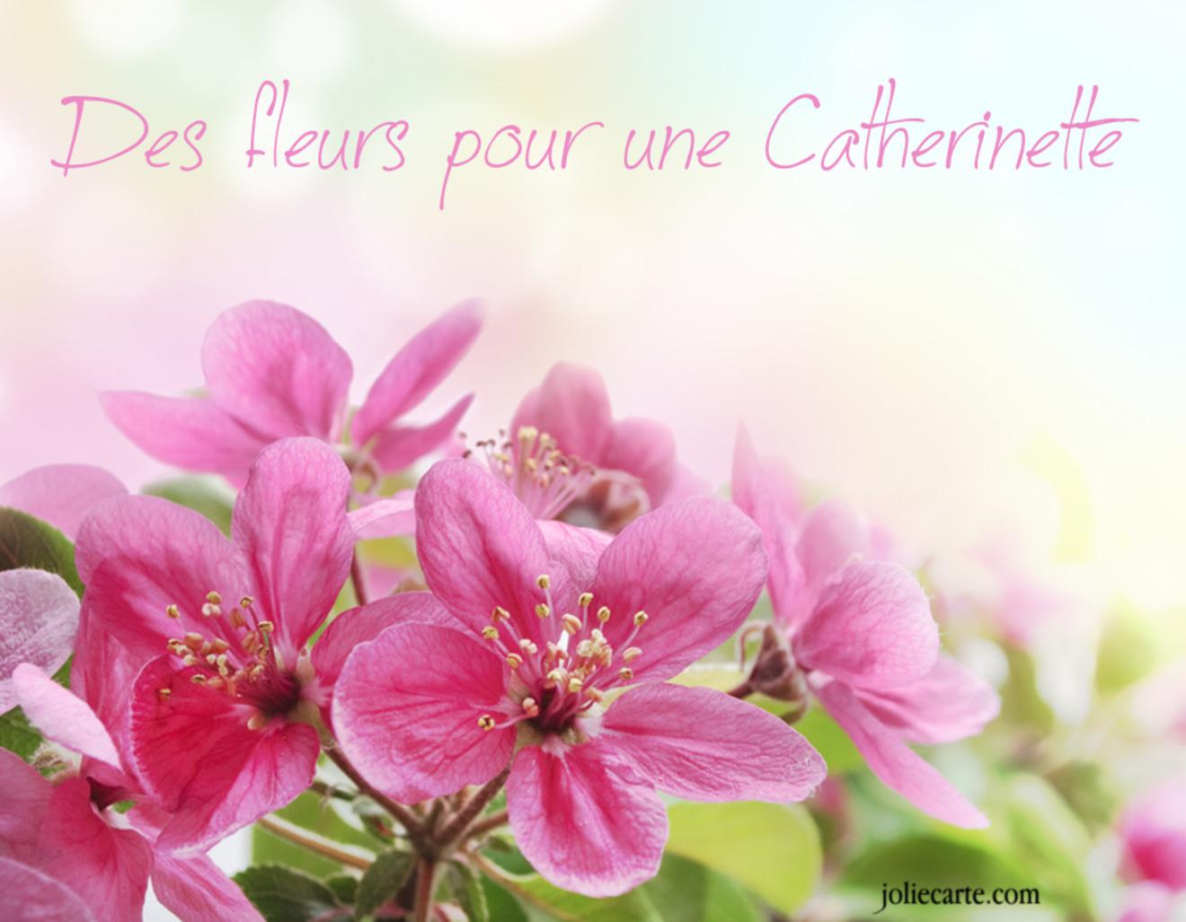 Fleur pour catherinette