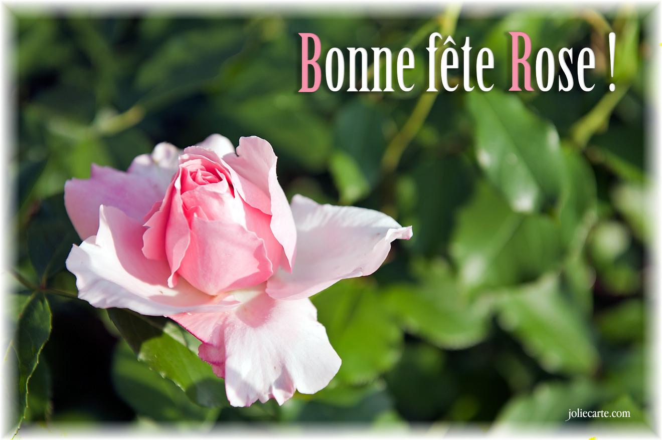 Cartes virtuelles fete rose joliecarte - Fete de la rose gerberoy ...