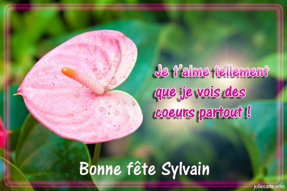 Carte Virtuelle Bonne Fete Sylvain.Cartes Virtuelles Bonne Fete Sylvain