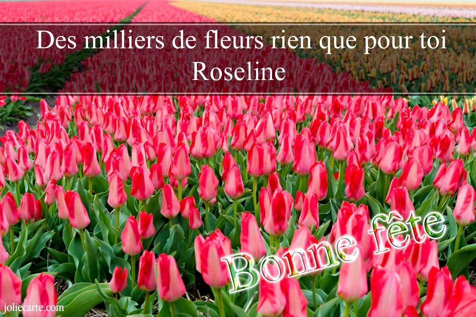 Carte Bonne Fete Roselyne.Cartes Virtuelles Bonne Fete Roseline