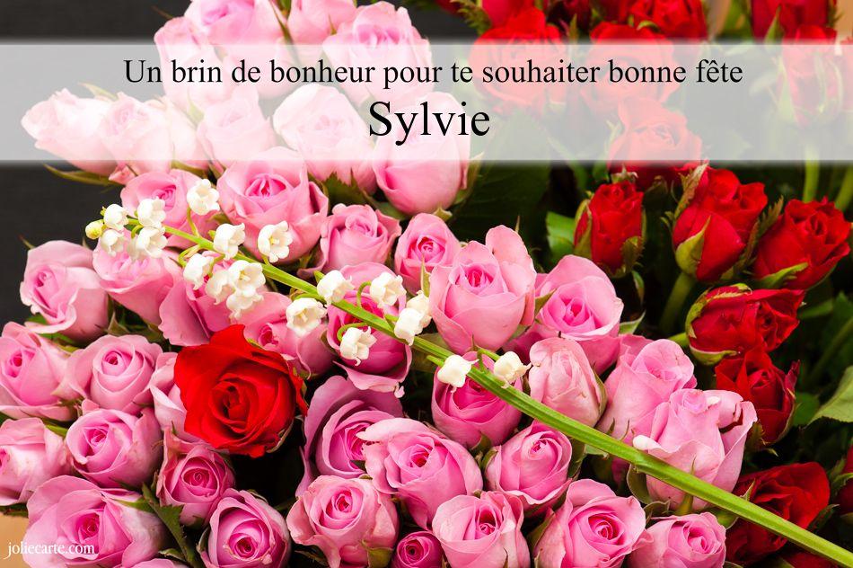 Cartes Virtuelles Bonne Fête Sylvie