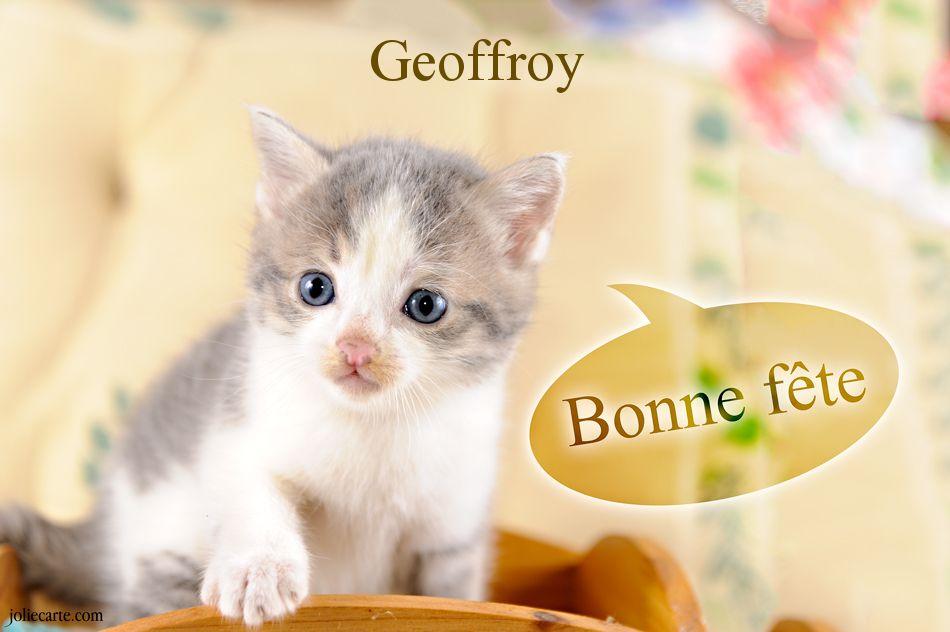 Cartes virtuelles bonne f te geoffroy - Geoffrey prenom ...