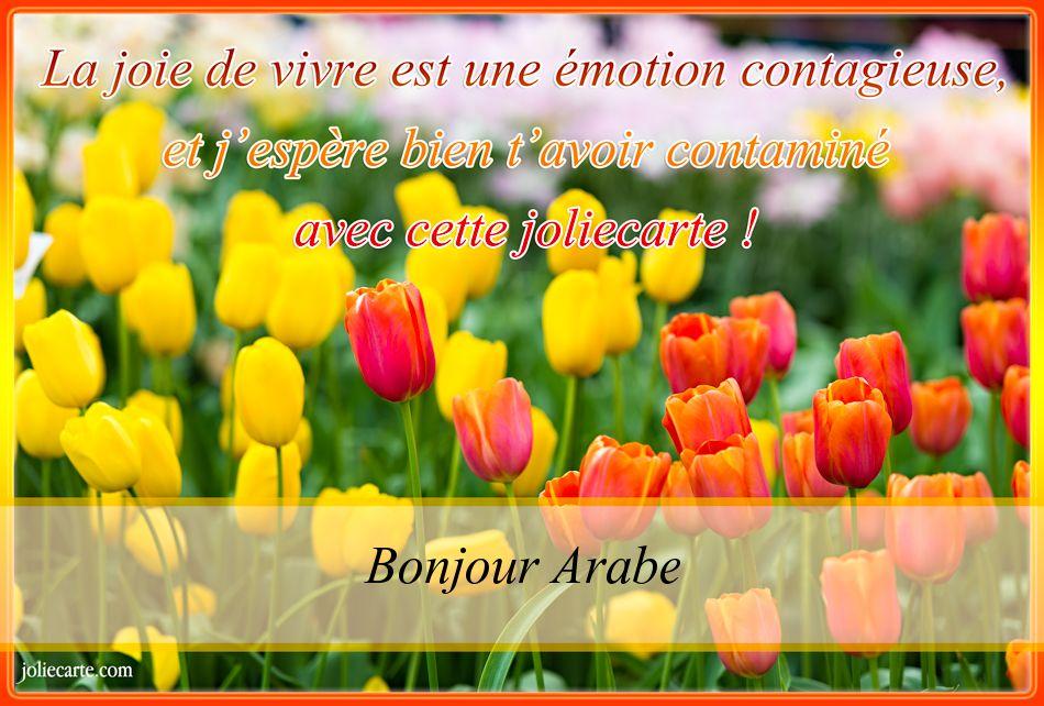 Célèbre Cartes virtuelles bonne journée Arabe WA26