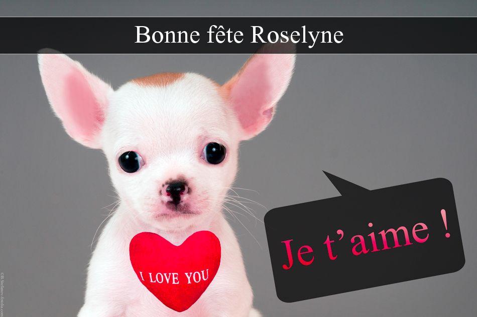 Carte Bonne Fete Roselyne.Cartes Virtuelles Bonne Fete Roselyne