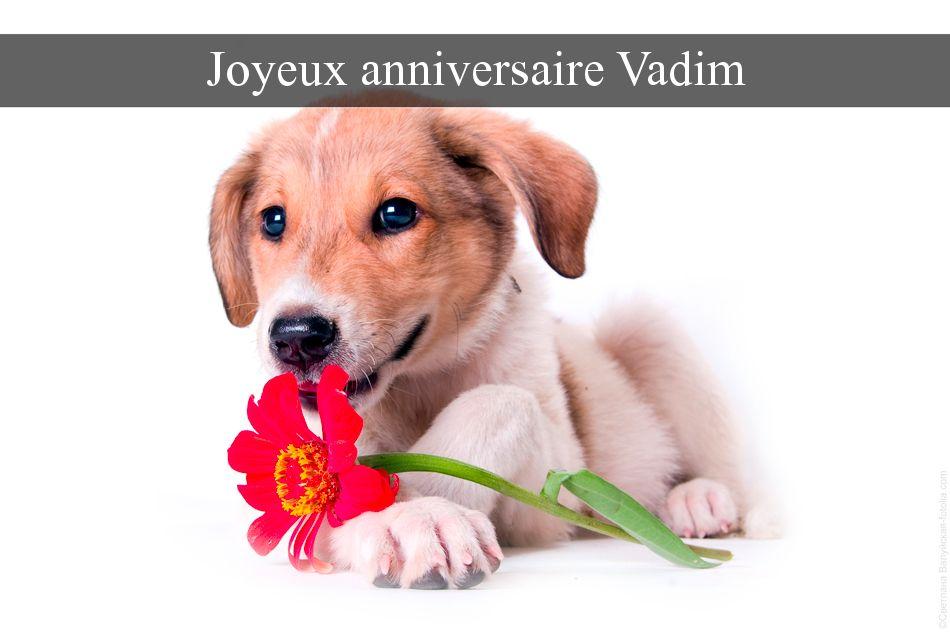 cartes virtuelles joyeux anniversaire vadim